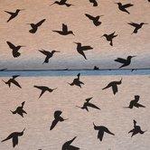 Hummingbirds-grey